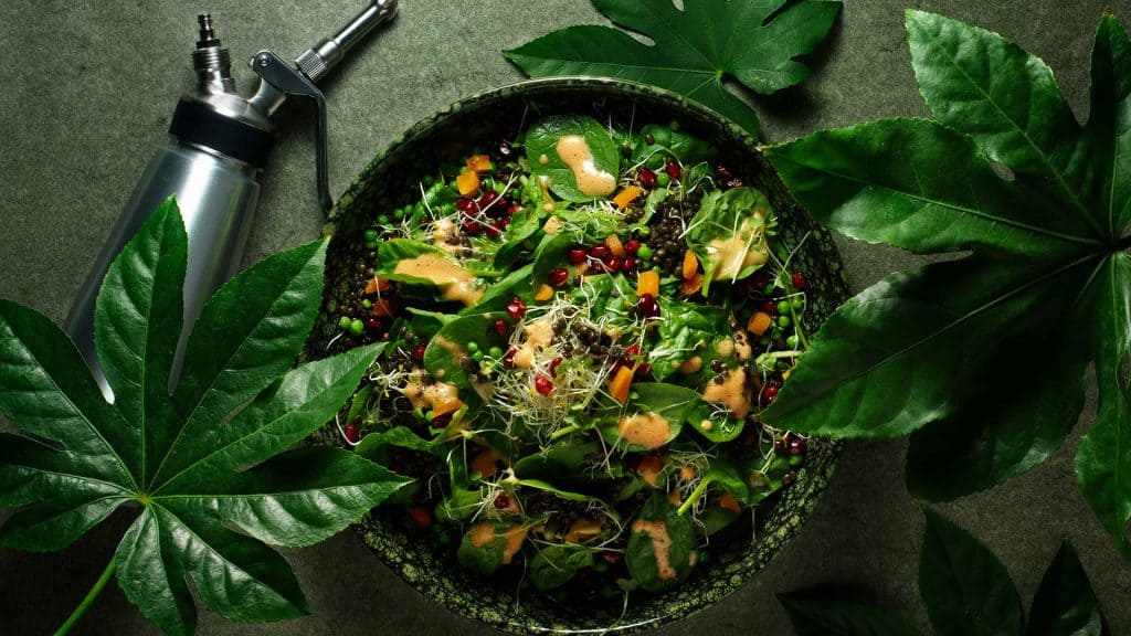 Green salad with pomegranate dressing